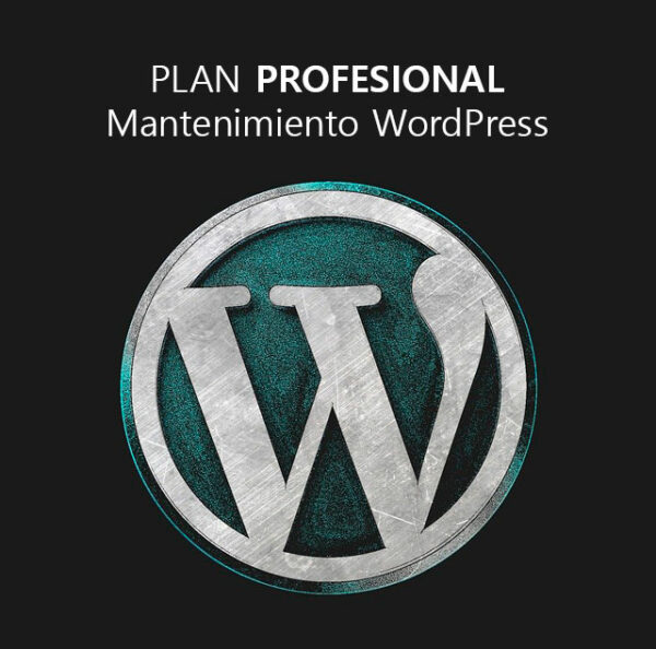 Plan profesional de mantenimiento WordPress
